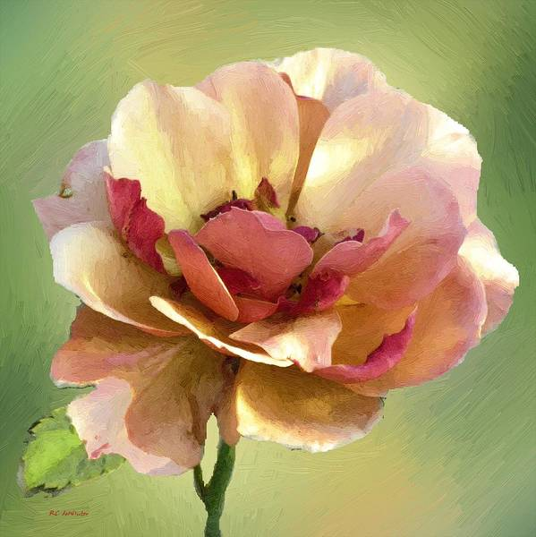 Painting - Seductive by RC DeWinter