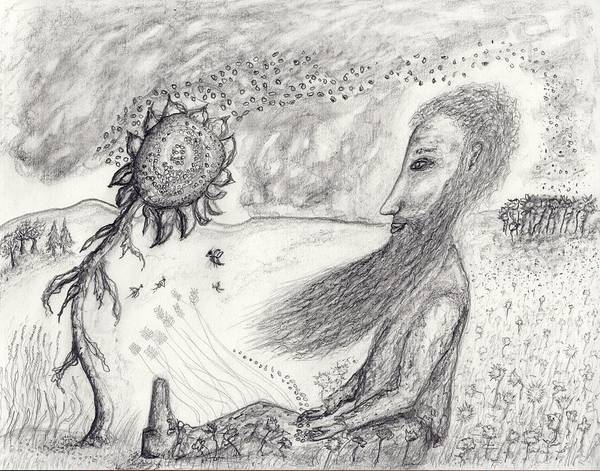 Sunflower Seeds Drawing - Seeds Of Change by Jim Taylor