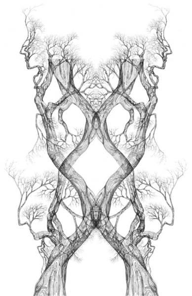 Digital Art - Seeing Tree 40 Hybrid1 by Brian Kirchner