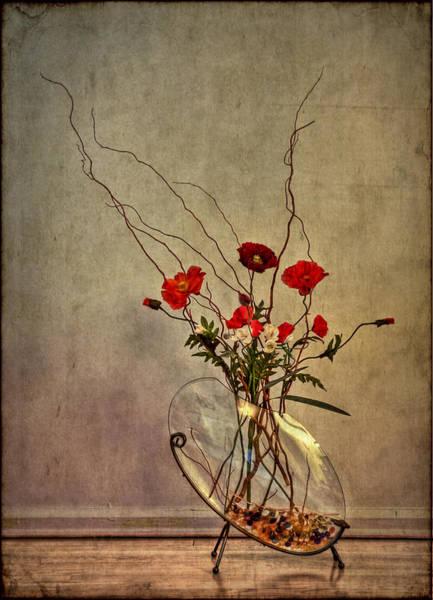 Wall Art - Photograph - Seeking Harmony by Evelina Kremsdorf