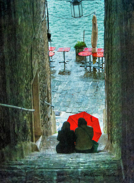 Photograph - Seeking Shelter by William Beuther