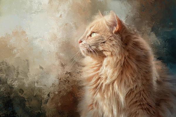 Photograph - Seeking Spring Cat Art by Jai Johnson