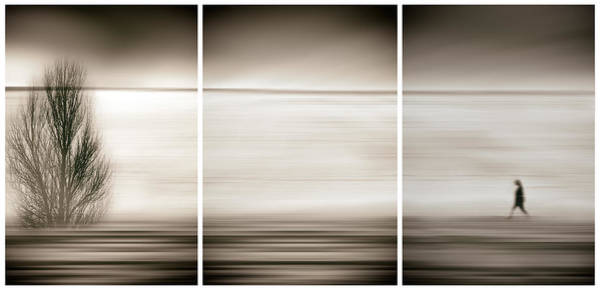 Wall Art - Photograph - Seeking The Invisible by Paulo Abrantes