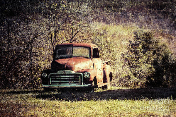 Photograph - Seen On A Country Road by Eleanor Abramson