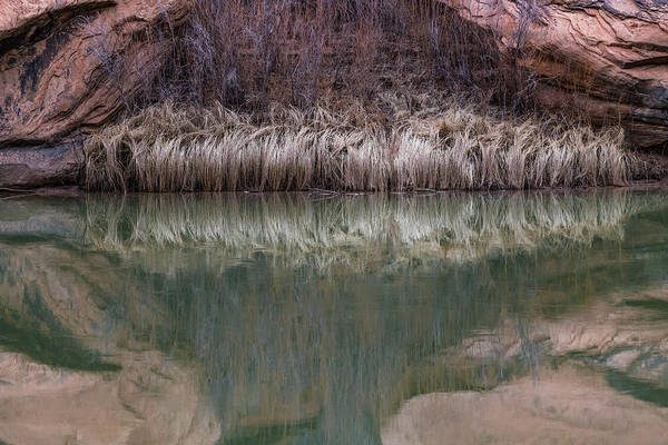 Photograph - Seep Pool by Deborah Hughes