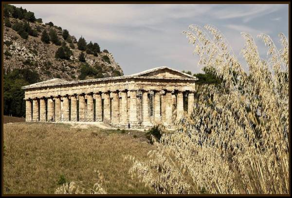 Photograph - Segesta by John Meader