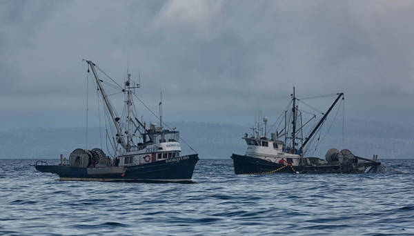 Photograph - Seiners by Randy Hall