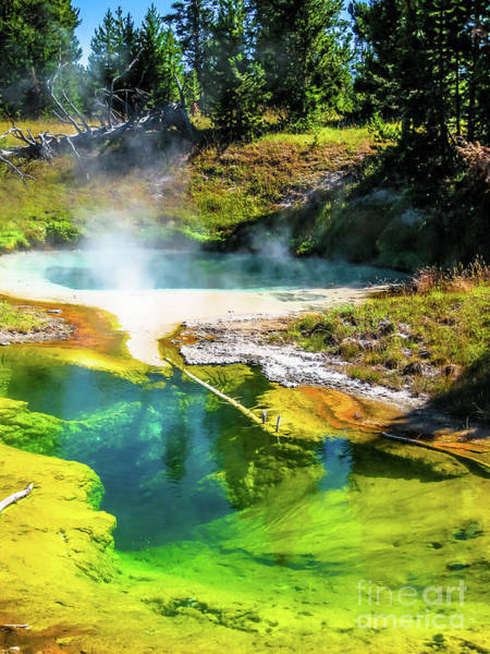 Photograph - Seismograph Pool In Yellowstone by Benny Marty