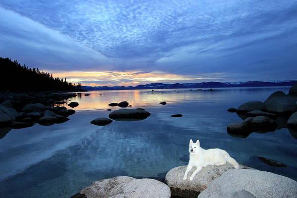 Photograph - Sekani Sunset by Sean Sarsfield
