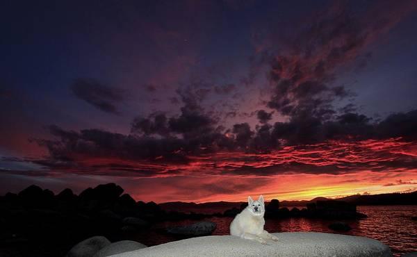 Photograph - Sekani Sundown by Sean Sarsfield