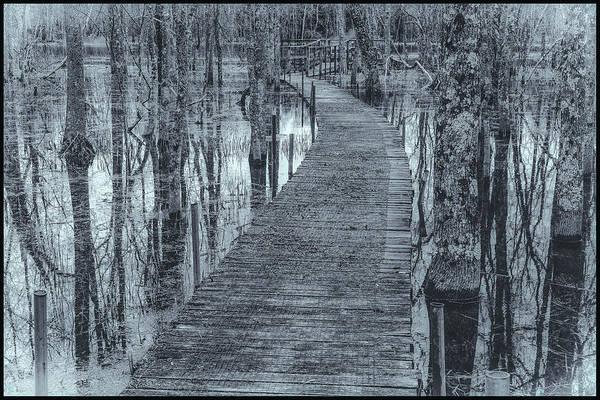 Photograph - Selenium Boardwalk  by David Heilman