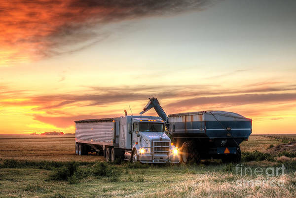 Semi Truck Photograph - Semi Truck Unload by Thomas Zimmerman