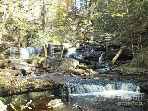 Sullivan County Photograph - Delaware Falls 4 - Ricketts Glen by Cindy Treger