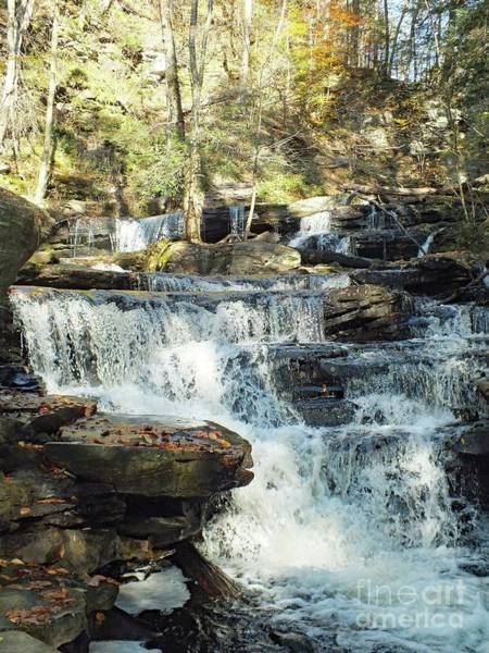 Sullivan County Photograph - Delaware 5 - Ricketts Glen by Cindy Treger
