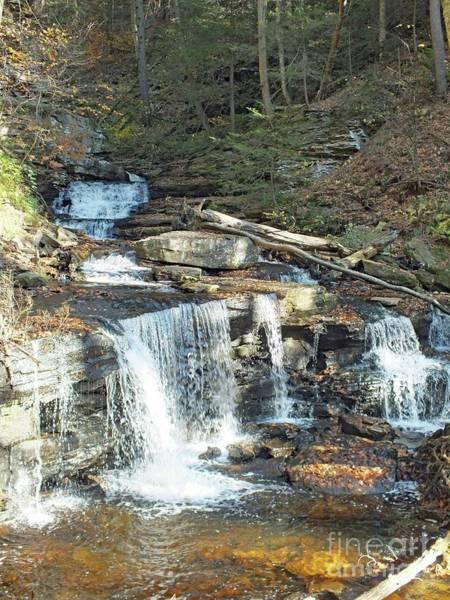 Sullivan County Photograph - Delaware And Seneca Falls - Ricketts Glen by Cindy Treger
