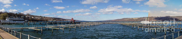 Photograph - Seneca Harbor by William Norton