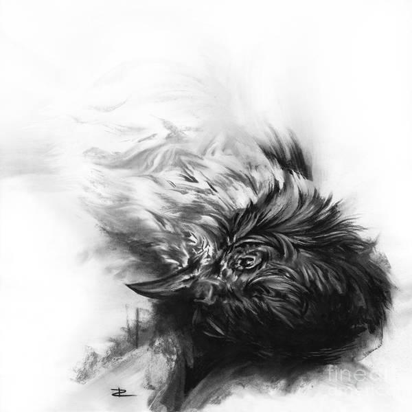 Avian Drawing - Senescence 4 by Paul Davenport