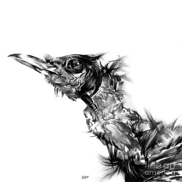 Avian Drawing - Senescence 5 by Paul Davenport