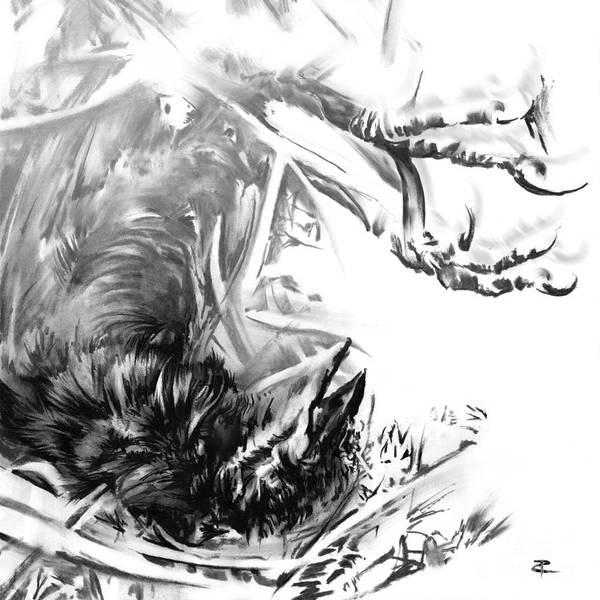 Avian Drawing - Senescence 6 by Paul Davenport