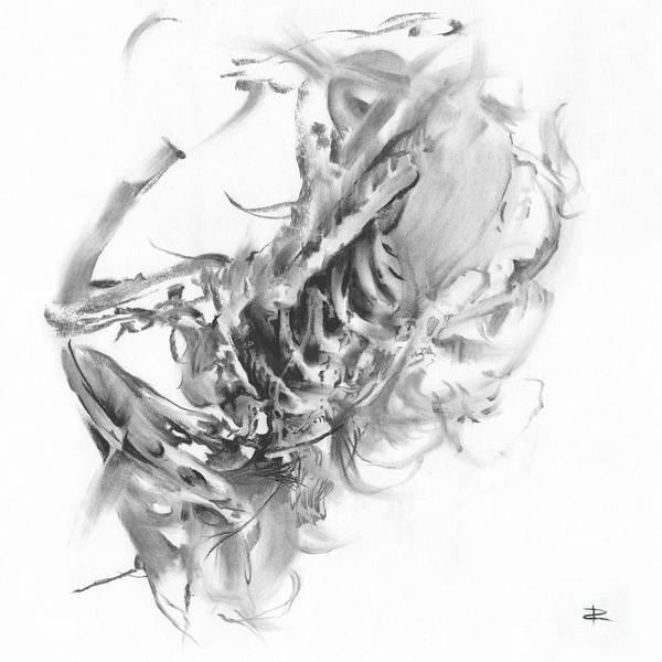 Avian Drawing - Senescence 8 by Paul Davenport
