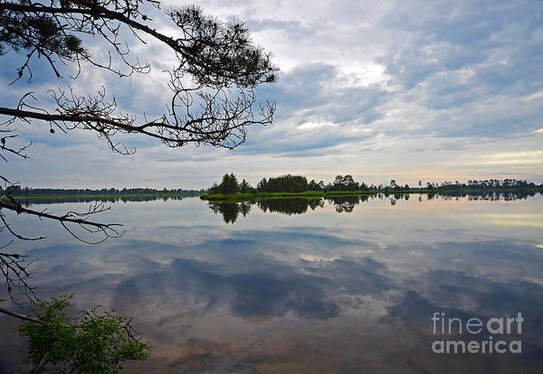 Photograph - Seney National Wildlife Refuge by Rodney Campbell