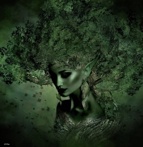 Olives Mixed Media - Sensual Tree Elf by G Berry
