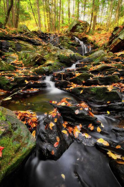 Photograph - Senter Falls by Robert Clifford