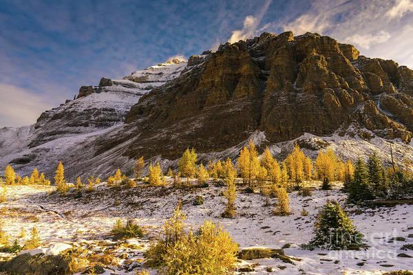 Moraine Lake Photograph - Sentinel Pass Pinnacle Peak Golden Autumn Light by Mike Reid