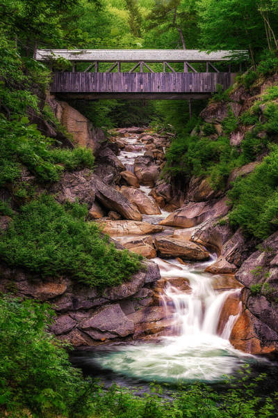 Sentinel Photograph - Sentinel Pine Bridge - Flume Gorge - Franconia Notch by Jeff Bazinet