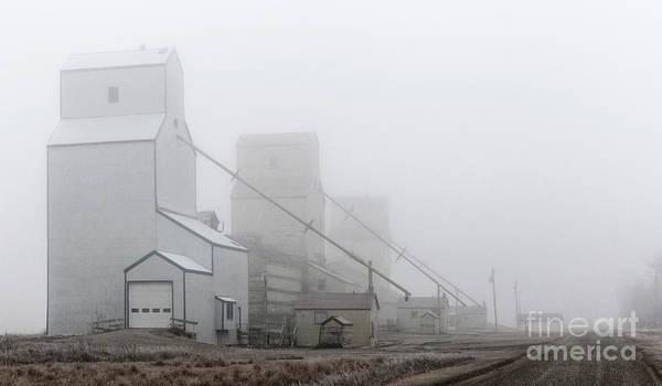 Photograph - Sentinels In The Fog by Brad Allen Fine Art