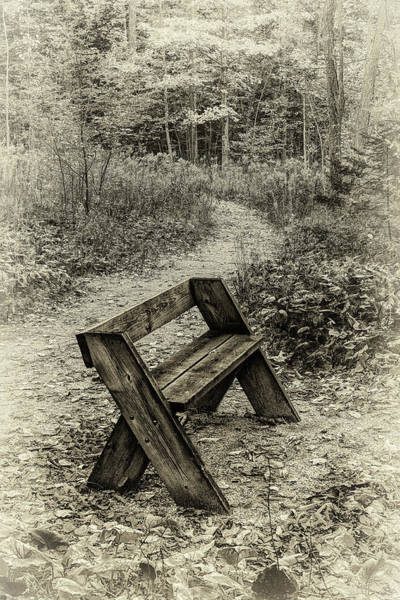 Photograph - Sepia Bench by David Heilman