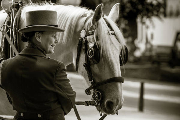 Photograph - Sepia Carriage Horse With Handler by Dennis Dame