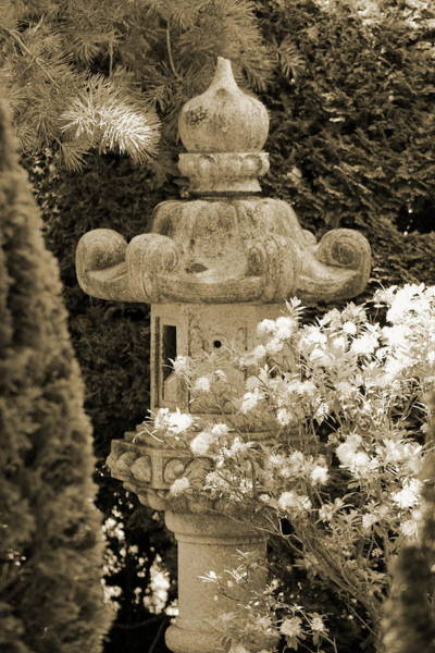 Photograph - Sepia Pagoda In Japanese Garden by Colleen Cornelius