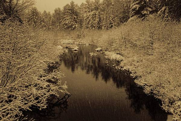 Photograph - Sepia Snowfall On Boot Creek by Dale Kauzlaric