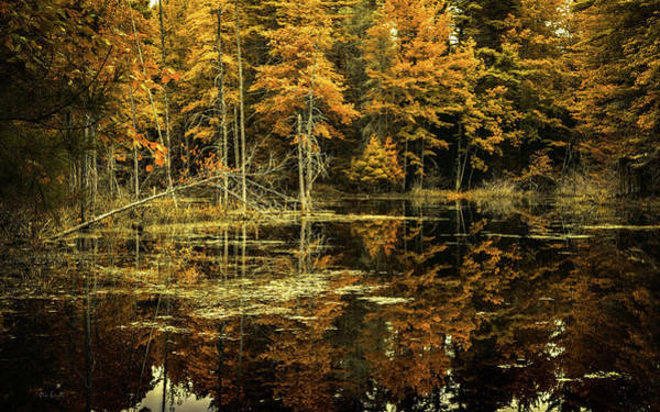 Photograph - September Eve by Bob Orsillo