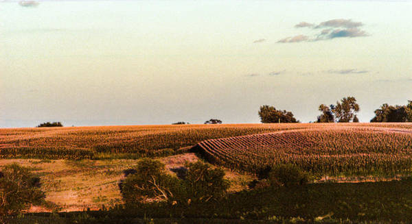 Photograph - September Fields In Iowa by Pete Hendley