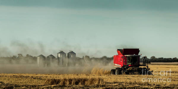 Photograph - September Harvest by Brad Allen Fine Art