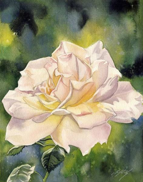 Painting - September Rose by Alfred Ng