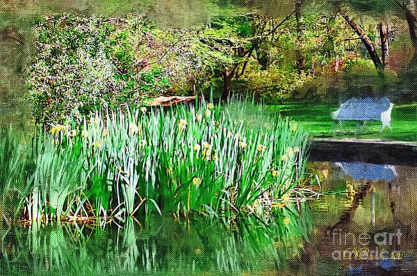 Photograph - Serene Iris by Donna Bentley