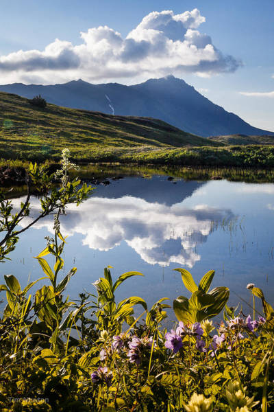 Photograph - Serene Mountain Lake by Tim Newton