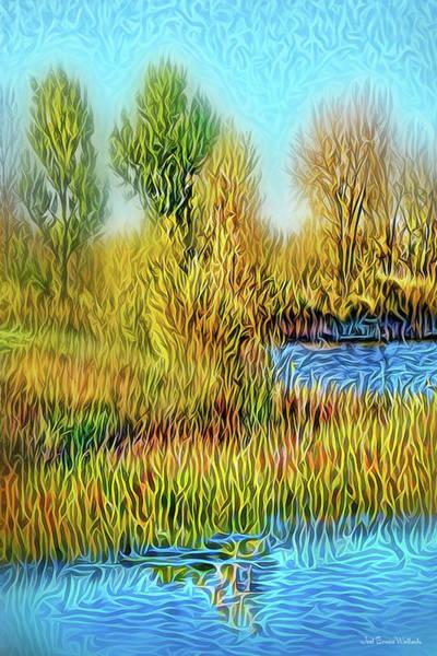 Digital Art - Serene Space by Joel Bruce Wallach