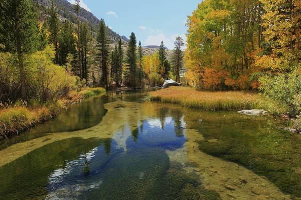 Photograph - Serene Stream by Sean Sarsfield