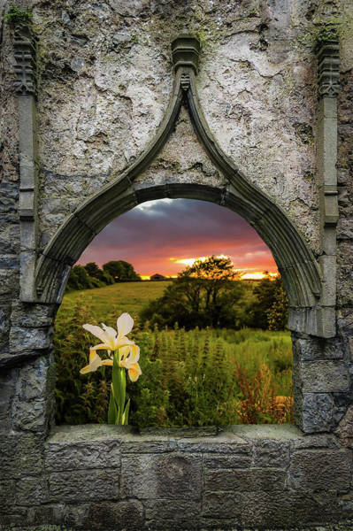 Photograph - Serene Sunset Over County Clare by James Truett