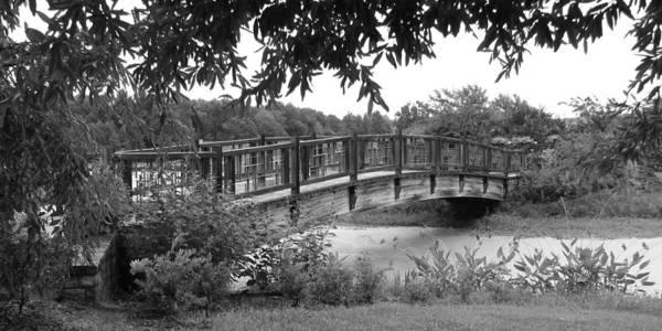Photograph - Serenity Bridge Bandw by David Dunham