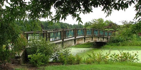 Photograph - Serenity Bridge by David Dunham