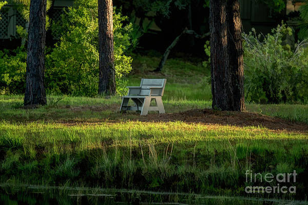 Wall Art - Photograph - Serenity by Deborah Benoit