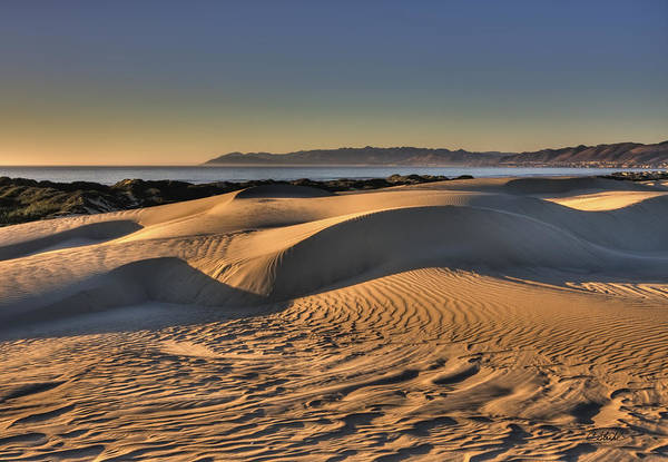 Photograph - Serenity In The Dunes by Cheryl Strahl