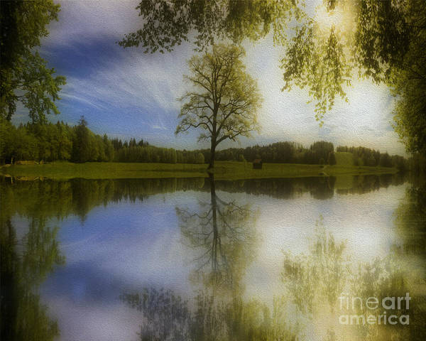 Photograph - Serenity Reflected by Edmund Nagele