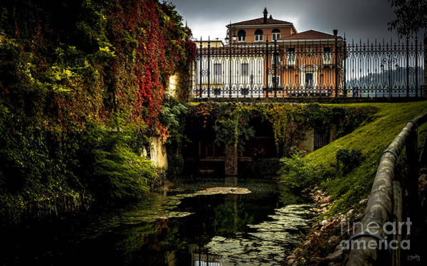 Photograph - Seriola With Autumn Colors by Prints of Italy