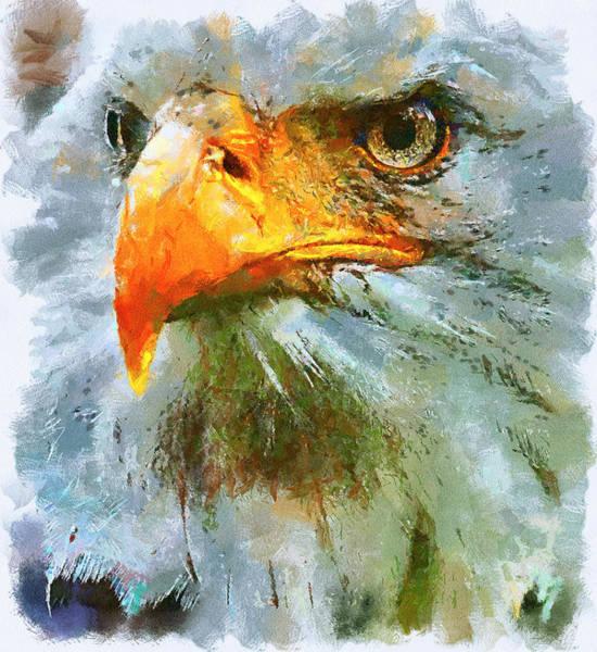 Daylight Digital Art - Serious Eagle by Yury Malkov